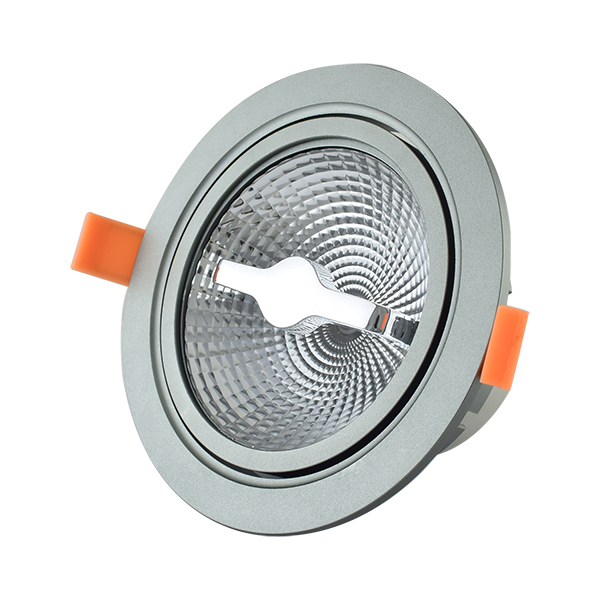 LED Detachable Downlight 12W