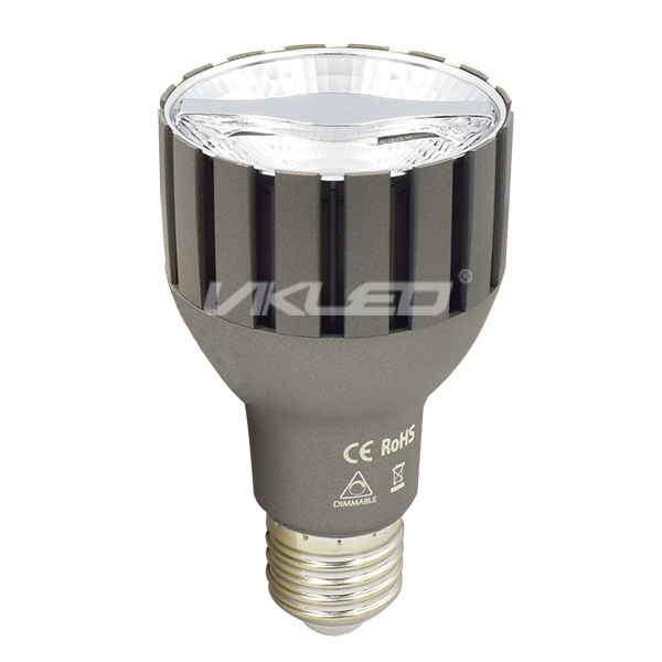 Leading Edge PAR20 LED Reflector Dimmable 7W GS Samsung