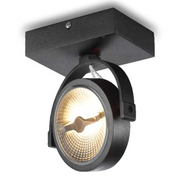 AR111 Ceiling Surface Mounted Fixture For Single Bulb