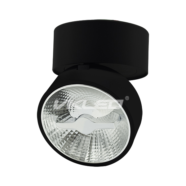 Glory 15W Surface Mounted Ceiling Light